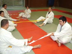 Judo et handicap